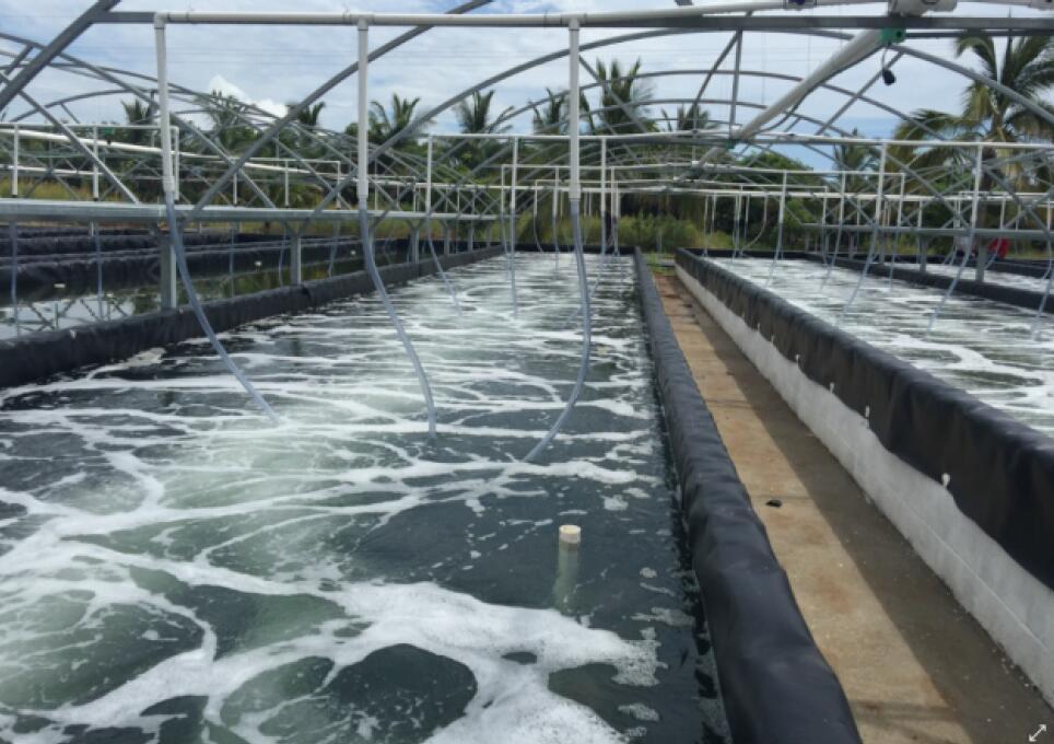 海为PLC在水产增氧系统上的应用